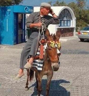 Taxi-jumento